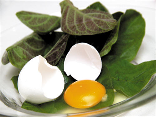 Trứng gà và lá mơ là 2 nguyên liệu chính giúp điều trị chứng kiết lỵ