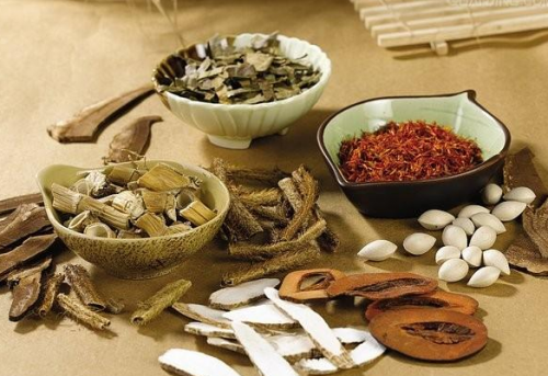 Có thể sử dụng thuốc Đông Y điều trị bệnh run tay được không?