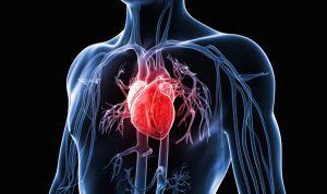 Rối loạn nhịp tim chậm gây ra nhiều nguy hiểm