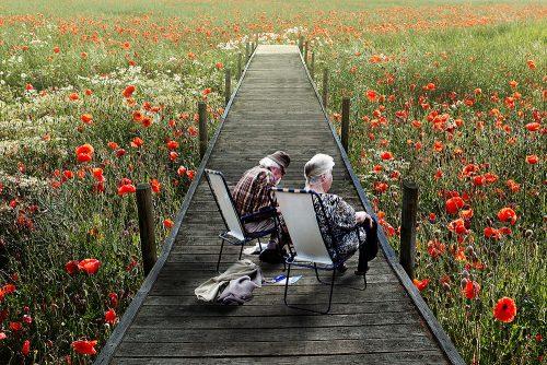 Khi về già người già mong có người bầu bạn