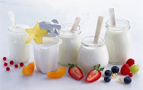 Sữa chua là loại thực phẩm rất tốt cho sức khỏe con người